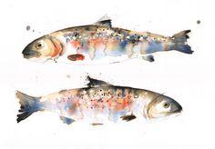 "Saatchi Online Artist Lucy Newton; Mixed Media, ""rainbow trout"""