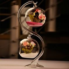 Hanging Glass Flowers Plant Vase