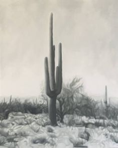Saguaro Study II 2020 huile Kyle O& sur le panneau 16 x 20 pouces Gray Aesthetic, Retro Aesthetic, Aesthetic Photo, Aesthetic Pictures, Bedroom Wall Collage, Photo Wall Collage, Picture Wall, Aesthetic Pastel Wallpaper, Aesthetic Backgrounds