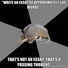 There is totally a meme called English Major Armadillo. HELLO, this was made for me.
