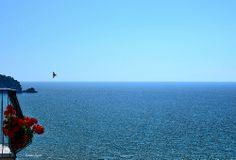 """DSC_1297  """"Libertà"""", Sperlonga (maggio 2014)"""