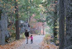 10 Ways to Turn a Walk into a Kid-Friendly Adventure