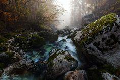 Triglav National Park, Slovenia Into the Fog by TobiasRichter