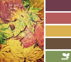 mauve and yellow and green?