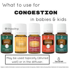 oil for congestion TIPS & TRICKS What is used for congestion in infants Myrtle Essential Oil, Essential Oils For Babies, Essential Oils Guide, Tea Tree Essential Oil, Young Living Essential Oils, Essential Oil Blends, Essential Oils For Congestion, Healthy Oils, Young Living Oils