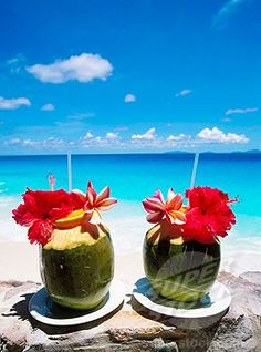 Coconut drinks on a beautiful beach!