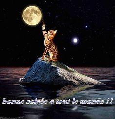Très belle soirée a tous. A votre disposition une équipe de VOYANCE jour & nuit & 7J/7 Audiotel 0892.68.23.88 et en privé par tel 01.72.76.09.38 #LeaMedium 01.71.19.23.48 😊0892.05.36.10 http://www.chantalemedium.com DOM -TOM 0892.700.577 Sans CB 0899.199.719 et 08.99.65.03.40 #Bonheur #Joie #Amitié #Amour