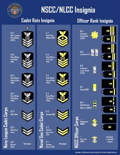 Naval Sea Cadet rate and adult officer rank chart. Navy Seal Ranks, Navy Officer Ranks, Marine Officer, Military Ranks, Military Officer, Military Insignia, Navy Military, Navy Seals, Military History