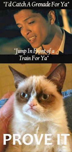 Grumpy cat, prove it
