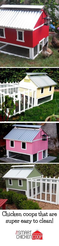 Check out these cute backyard chicken coops! I can paint it to match my house or make a great garden focal point.  Plus, this design is the easiest coop on the market to keep clean-- cuts chores to once every few weeks! The design is also flexible and allows you to expand the coop later and to add runs in a bunch of shapes!