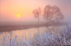 ***Frosty, foggy dawn on the bank of a small river (Ukraine) by Anton Petrus
