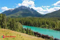 quebusca,qué busca,Nature,Naturaleza,Paisaje, laguna, agua, tren, bosque, vegetación