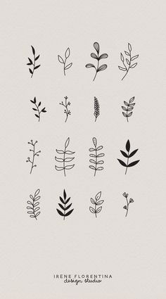 Fonts Handwriting Discover This bundle includes 50 unique botanical floral illustrations which you can use for logos invitations stationery patterns and much more. This design kit is drawn in Illustrator vector based and high quality. Mini Tattoos, Cute Tattoos, Flower Tattoos, Small Tattoos, Tatoos, Illustration Blume, Pattern Illustration, Botanical Illustration, Floral Drawing