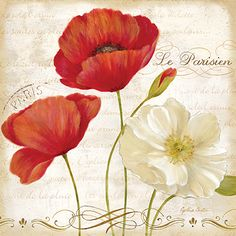 RB6793CC <br> Paris Poppies II  <br> 18x18