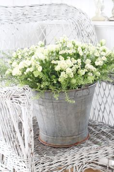 Garden | Planters
