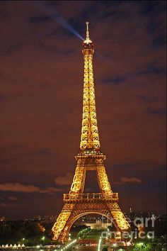 The magnificent Eiffel Tower at night.