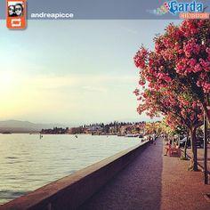 #PhotoGC http://instagram.com/p/pOlvu5mgmc/