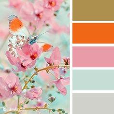 Color Inspiration  gold orange pink mint white