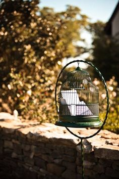 Cute birdcage idea for the gift table, or rather for the cards that are not otherwise attached to gifts.