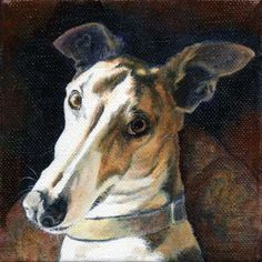 """Miki Too"" by Xan Blackburn. Acrylic on canvas.  Pet portrait, greyhound, hound, dog, dog portrait"
