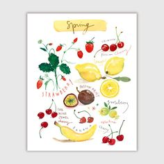 Spring fruits.  Archival giclee reproduction print from watercolor painting. Signed with pencil. Printed on fine art  BFK Rives  hot-pressed