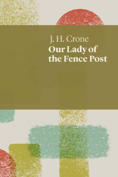 Adventurous, challenging and thoughtful: Paul Scully reviews 'Our Lady of the Fence Post' by J.H. Crone