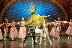 Ballet Photos - The Nutcracker Ballet Photos, Fotografia