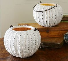 Sea Urchin Ceramic Lantern #potterybarn