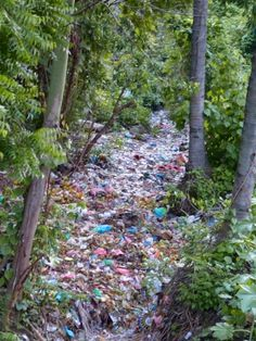 You Will Want To Recycle Everything After Seeing These Photos! - Pollution In A 'Dry River' In Bali