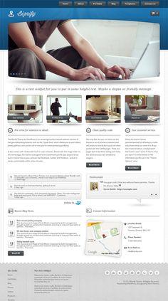 modern premium business WordPress theme from Mint Theme