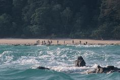 Sentinelese of the Andaman Islands