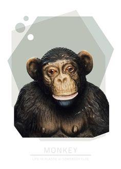 Monkey 30*40 cm