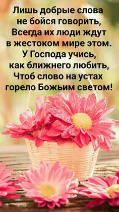 Motivational Thoughts, Inspirational Quotes, Biblical Verses, Beautiful Words, Wise Words, Good Morning, Diy And Crafts, Happy Birthday, Wisdom