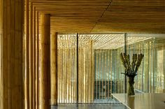 Bamboo Wall House