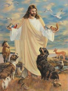 The Lord God made them all. God and Jesus Christ Images Bible, Image Jesus, Pictures Of Jesus Christ, Biblical Art, Jesus Is Lord, Jesus Faith, Rainbow Bridge, Christian Art, Religious Art