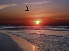Sunrise over Navarre Beach FL | As seen from Gulf Islands Na… | Flickr