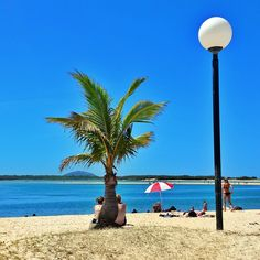 41 best oaks seaforth sunshine coast qld images sunshine coast 3 rh pinterest com