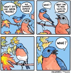 """falseknees: """"I feel like you're ignoring my question about this leaf """""""