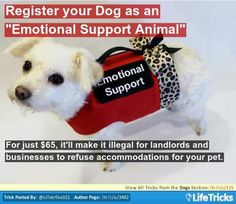 "Dogs - Register your Dog as an ""Emotional Support Animal"""