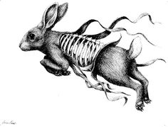 erica il cane rabbit