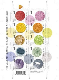 Microbiology themed postage stamps. Genetics & Biotech Philately: Netherlands 2011 On microbiology