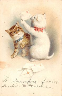 Greetings Kittens with Bows & Letters Artist Signed Antique Postcard (J25547)