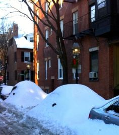 Cars? Snow banks? Animals? The snow in Boston, Massachusetts can be crazy in winter!