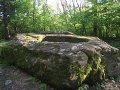Roc della regina (the Stone of the queen)  Viverone, Italy.  The Legend says it was the grave of an ancient queen. The rain gathering in the hole is said to have healing  properties. The real function and dating are unknown, but the area is very rich in stones carved with cup-size hole (coppelle).