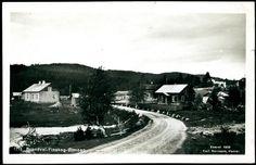 Hedmark fylke Solør BRANDVAL-Finskog-Øimoen. Lokalmotiv med gårder  Utg Normann. Postgått 1924