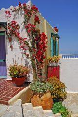 Korifi Suites - Gallery Mediterranean Plants, Greece Hotels, Lush, Photo Galleries, Gallery, Building, Art, Art Background, Roof Rack