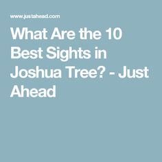 What Are the 10 Best Sights in Joshua Tree? - Just Ahead