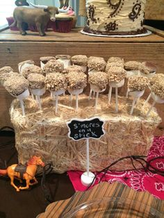 S'mores on a stick from a cowgirl birthday party! See more party planning ideas at CatchMyParty.com!