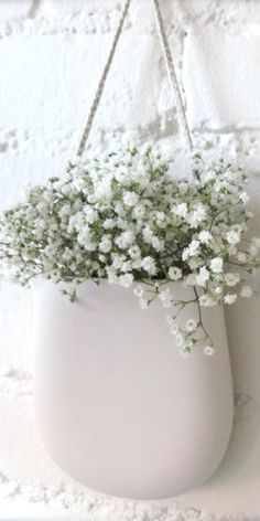 BABY'S BREATH....❤in a white ceramic hanging pouch. 12-26-2015.