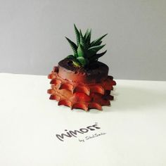 succulent, recycling ,machine Plant Design, Indoor Plants, Pineapple, Succulents, Recycling, Strawberry, Fruit, Food, Inside Plants